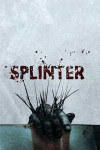 Splinter poster
